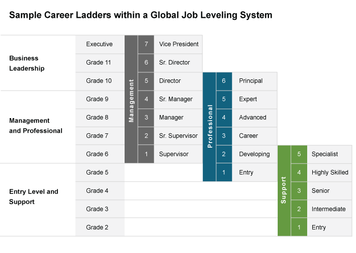 Illustration of Dual Career Ladders within a Job Leveling System
