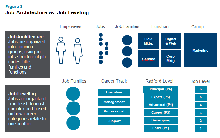 Job Architecture vs. Job Leveling